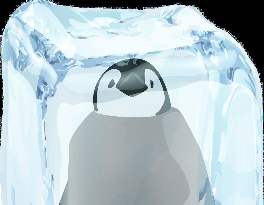 Image result for frozen penguin
